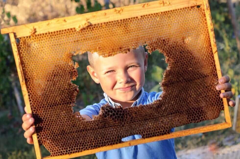 Kinder imkern mit bee-my-world für die Zukunft