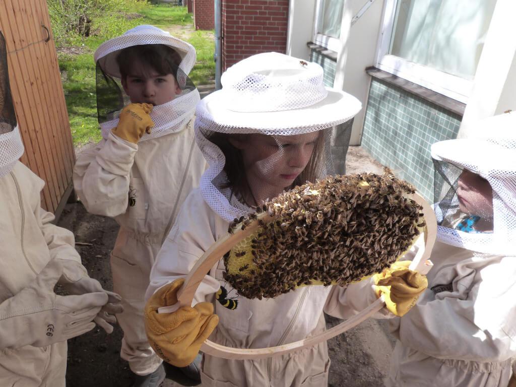 Bienen machen Schule, Undine Westphal