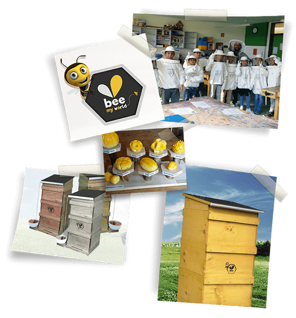 pix_back bee-my.world macht 100 Schulen zu Schulimkereien