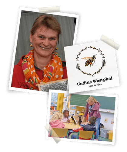 pix_back_undine Bienenprojekt der Grundschule Müssenredder